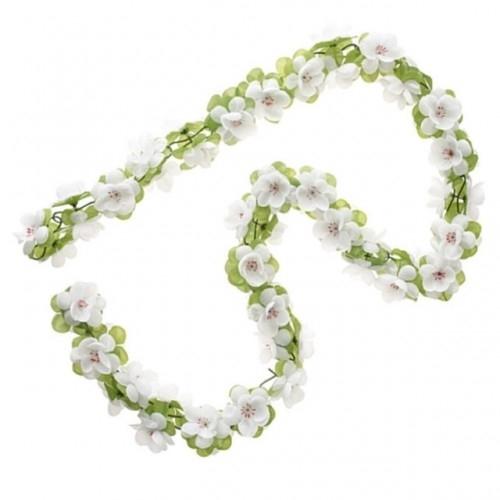 Λουλούδια σε σειρά χρώμα: Άσπρο 50182 Δαλαβίκας bikes